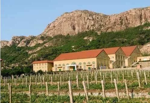 中国工程院院士将在昌黎兴建葡萄酒产业工作站