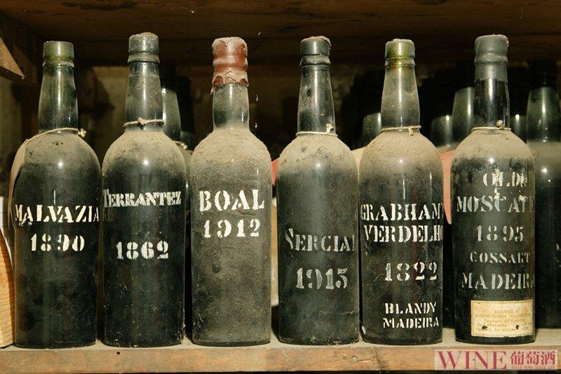 万花筒里看品种:葡萄牙