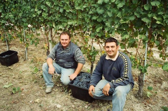 甘吉亚酒庄(LaGanghija)——位于意大利皮埃蒙特的酒庄