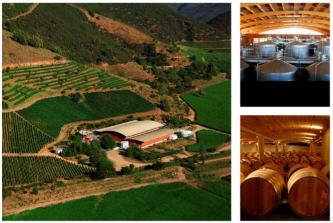 智利葡萄酒品质之选,会众商贸进口葡萄酒招商加盟