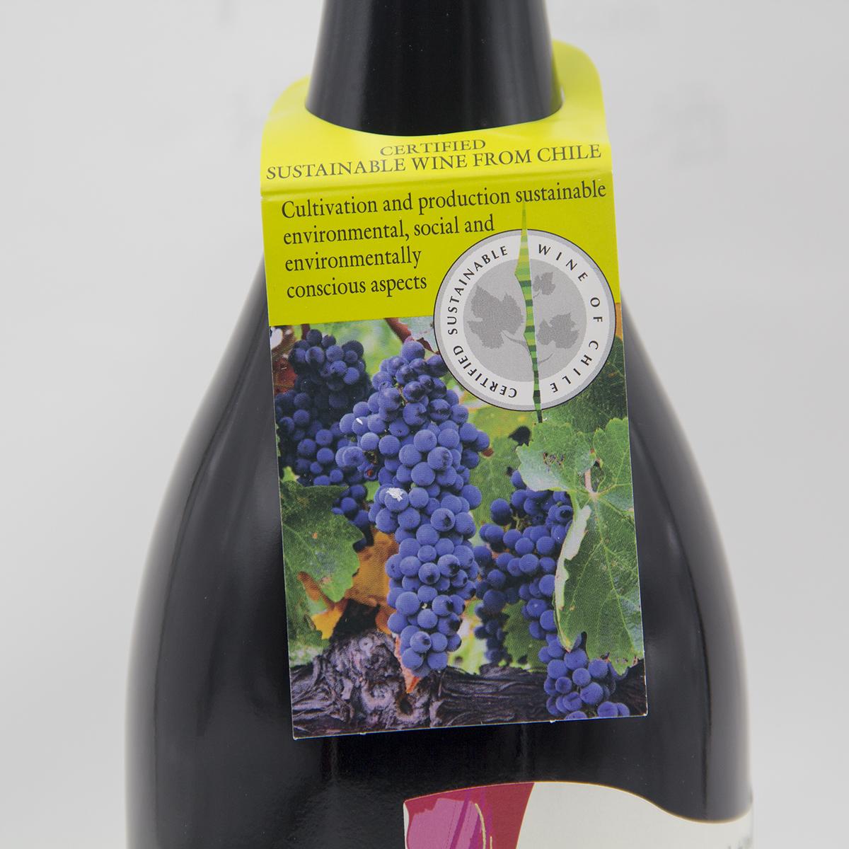 瓦帕珍藏西拉红葡萄酒(有机葡萄酒)