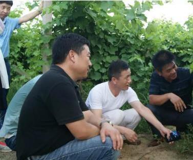 黄河故道产区暨民权葡萄酒发展战略研讨会日前召开