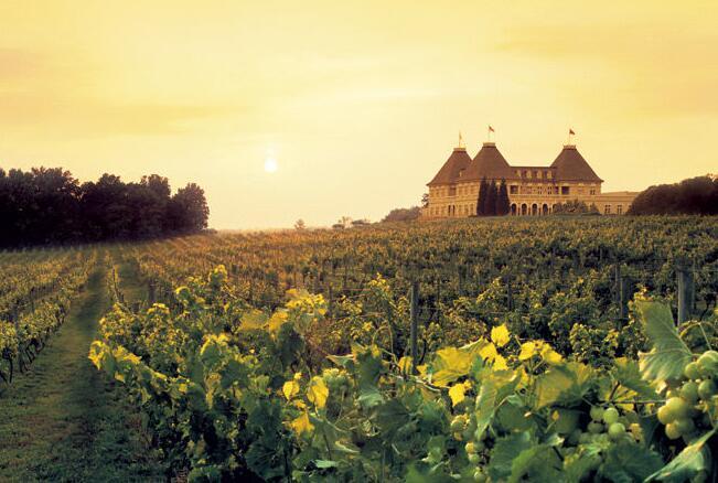法国葡萄酒闻名的十大产区 法国葡萄酒文化的产地