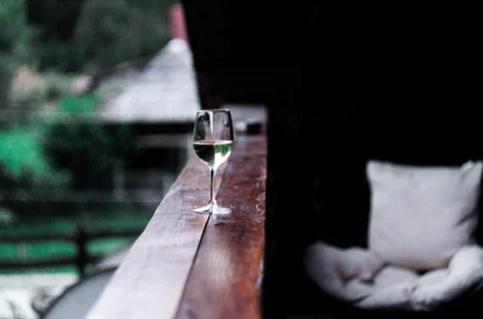 葡萄酒文化入门知识 怎样品葡萄酒