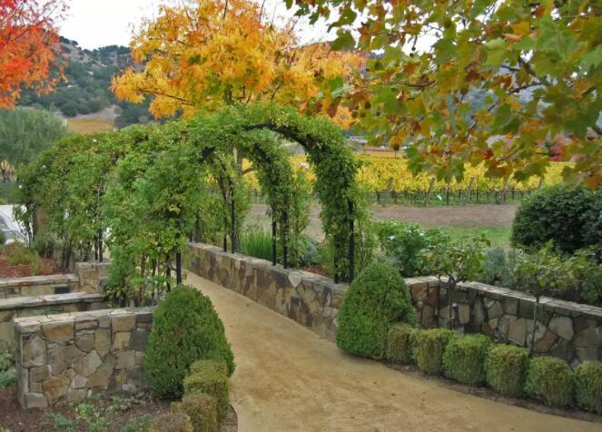 纳帕谷最佳的八个赤霞珠葡萄酒庄园
