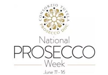普洛赛克(Prosecco)葡萄酒完整的信息图表