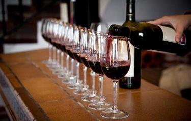 智利人年均酒精消费量为拉美最高