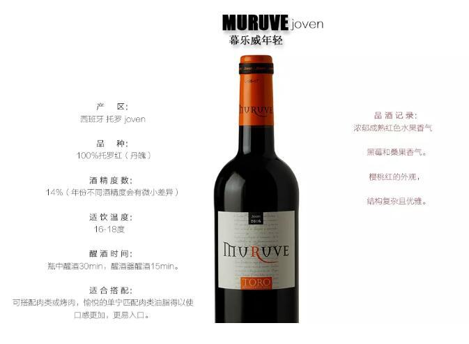 11.9-11日 | Interwine 遇见西班牙硕果酒庄,您遇见美酒