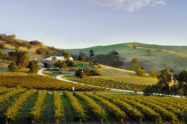 澳大利亚有哪些著名葡萄酒产区?