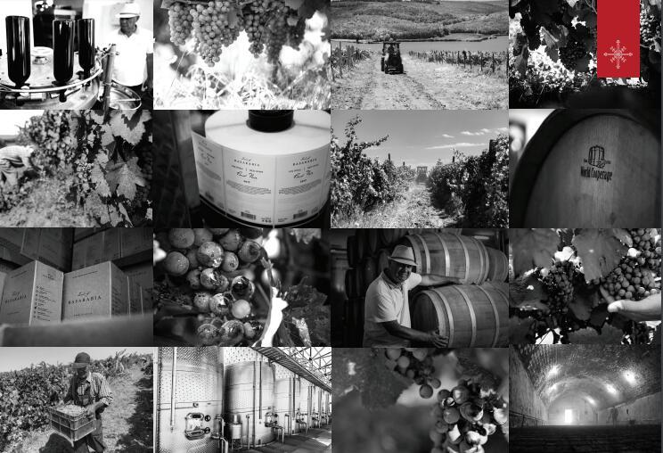 """代理堡尔酒庄-摩尔多瓦""""Land of Basarabia""""葡萄酒声名远扬"""