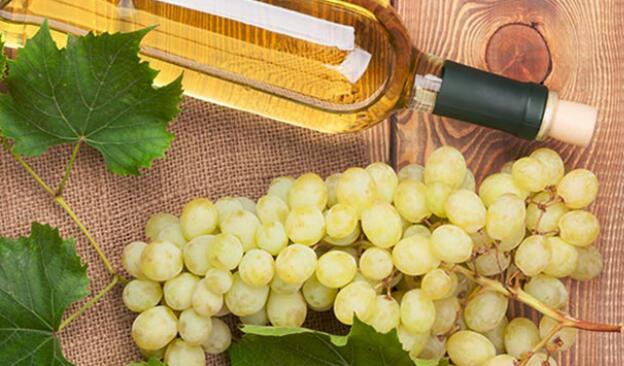 维欧尼葡萄酒品尝指南