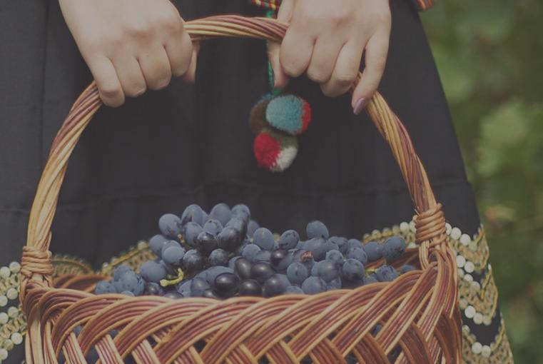 摩尔多瓦葡萄酒古往今来 摩尔多瓦红酒酿造文化