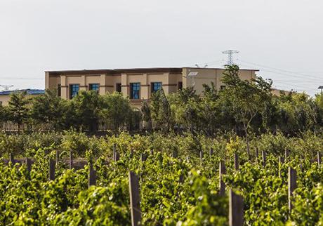 梦沙泉酒庄(Domaine Fontaine Sable)