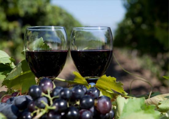 知名葡萄酒的产地是在哪里?
