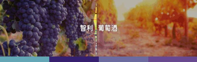 酿酒师的天堂?2019年智利葡萄酒能保持风靡全球的势头吗