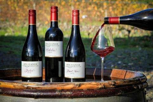 从事进口红酒代理行业能赚钱吗?