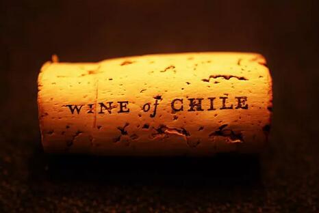关于智利葡萄酒,越来越多的人注意到了这几点......