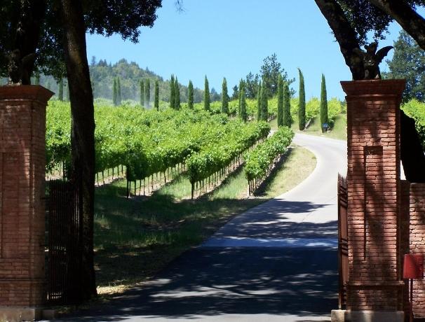 美国最佳葡萄酒度假目的地