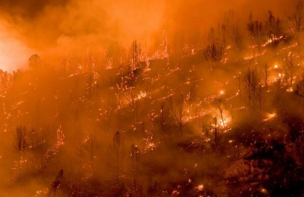 火灾对纳帕和索诺玛葡萄酒意味着什么?
