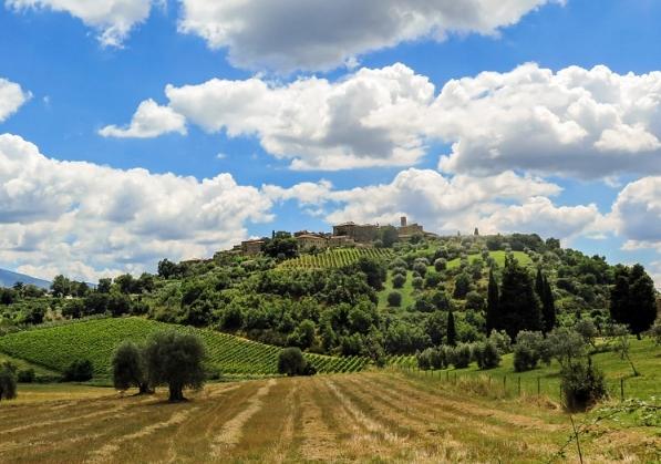 意大利葡萄酒产区:托斯卡纳指南