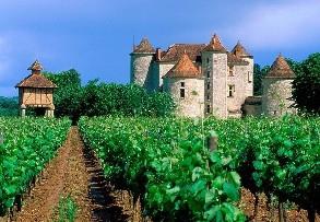 世界上的三个知名葡萄酒园,大家了解过吗?