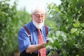 世界葡萄酒大师领衔 | 22届IGC来临在即,大赛报名进行时!
