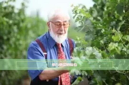 6.3-5 Interwine精品大师班 | 遇见世界第26位葡萄酒大师John Salvi MW