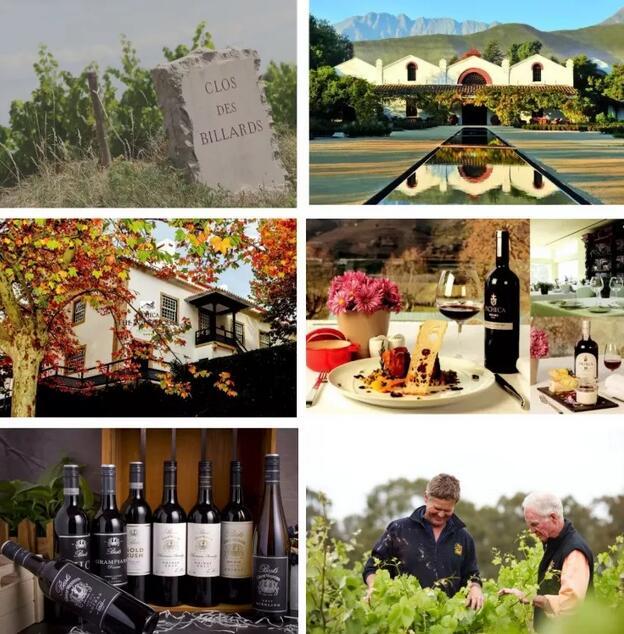 5.28-29 Interwine | 消费升级精品时代来临,如何抢占北方精品葡萄酒市场先机