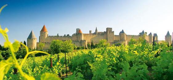 对于法国的葡萄酒文化,你知道个大概吗?
