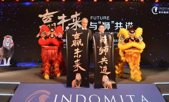 """上市1年提""""大单品""""规划,张裕魔狮能成为中国市场叫得响的""""雄狮""""吗?"""