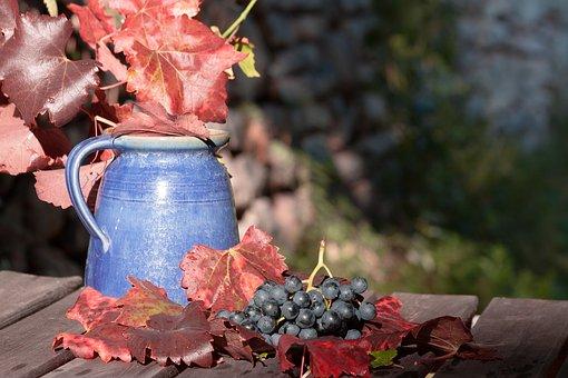 大家知道多少关于葡萄酒的入门知识呢?