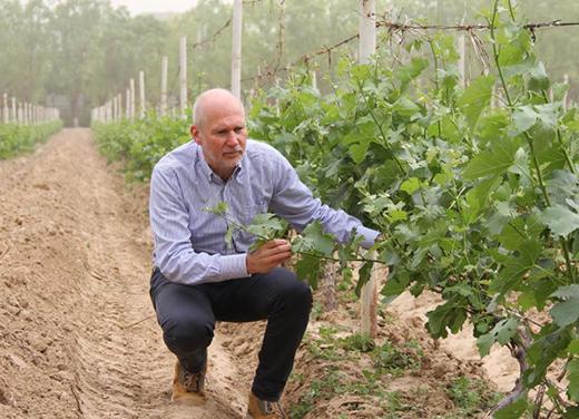 专访国际顶级酿酒师罗斯摩塞尔