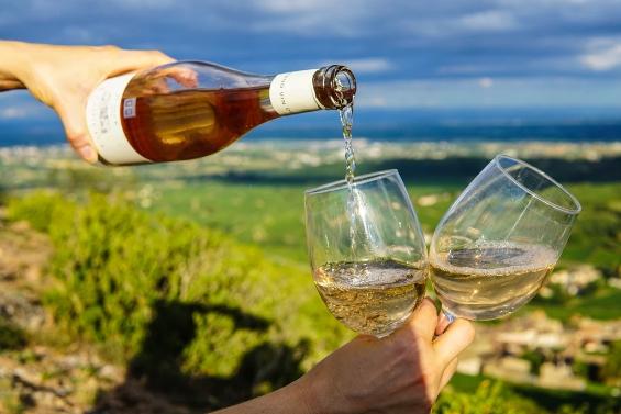 白葡萄酒的生产过程:白葡萄酒是如何制成的