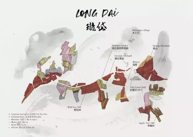 1篇数据全息解读中国拉菲:瓏岱