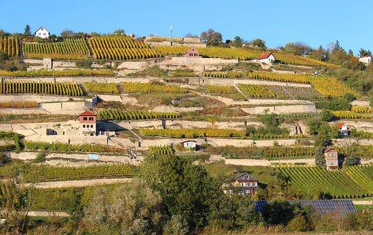 意大利的南部四区葡萄酒产区知识内容,你们是知道多少呢?