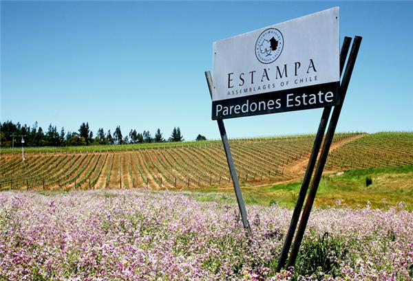 智利天宝庄园(Estampa)