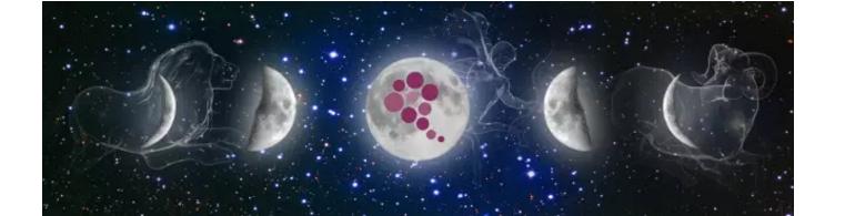 本世纪葡萄酒届最流行的理论:生物动力法