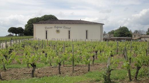 波尔多葡萄酒迎来美国增税冲击