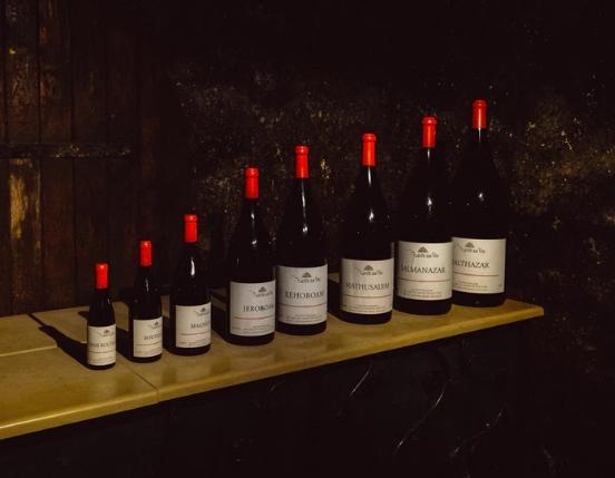 葡萄酒酒瓶形状和尺寸简析