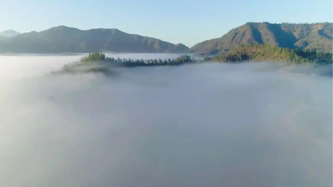 深圳欧孚带您品尝智利十八罗汉围绕的名庄 |11.9-11 Interwine