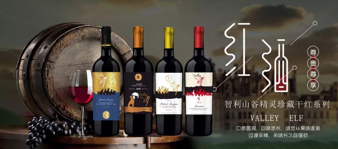 贴心的智利、法国葡萄酒进口商-深圳市天韵汇国际贸易有限公司 | 11.9-11 Interwine |