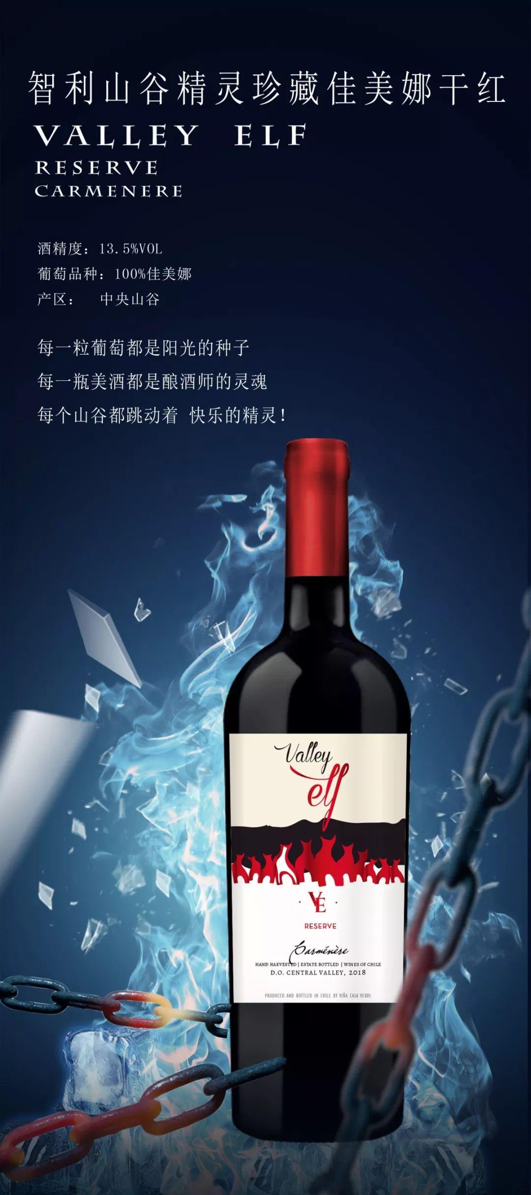 贴心的智利、法国葡萄酒进口商-深圳市天韵汇国际贸易有限公司   11.9-11 Interwine  