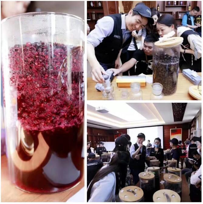 中国首次葡萄酒商业酿造课,圆满结束!