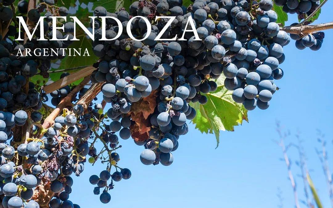 阿根廷门多萨省省长、市长亲临 11.9-11 Interwine 展会,亲自推广门多萨省葡萄酒