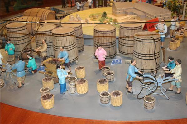 大家知道葡萄酒可以降帕金森风险吗?