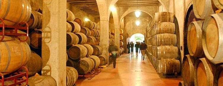 专访:北京和悦优品商贸有限公司|胡卡伯爵酒庄贵瓦雅娜有机葡萄酒