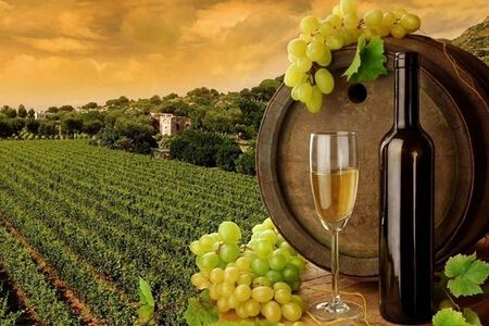 探寻意大利 领略甜红葡萄酒的魅力我们了解多少呢?
