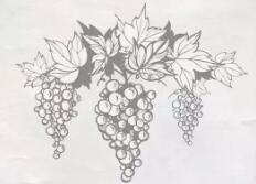 """葡萄酒成为""""文明人""""的饮品,原因竟然是这样..."""