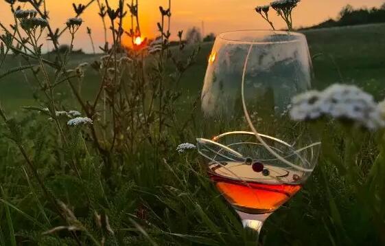 烟台政府制定相关条例促进葡萄酒产业发展