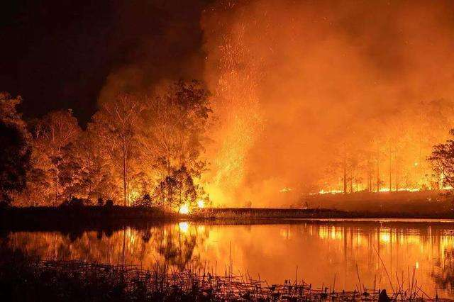 澳洲山火已导致60多家酒庄受损